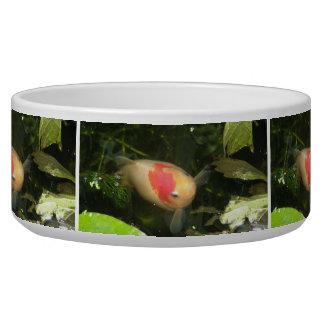 Goldfish Dog Bowl