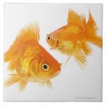 Goldfish dos que se cruza teja