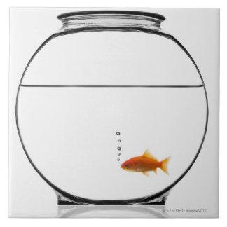 Goldfish en cuenco azulejos ceramicos