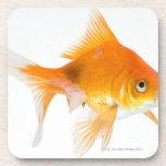 Goldfish en el fondo blanco posavaso