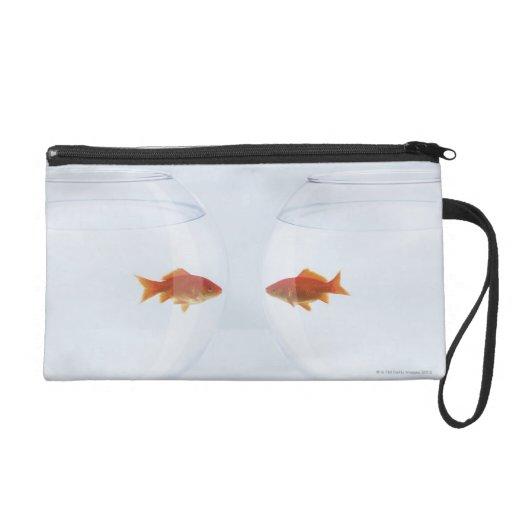Goldfish en los fishbowls separados que miran la c