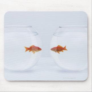 Goldfish en los fishbowls separados que miran la c tapete de ratones