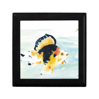 Goldfish Gift Box