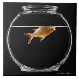 Goldfish in bowl 2 ceramic tile