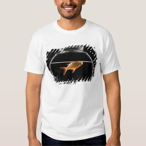 Goldfish in bowl 2 t shirt