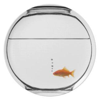 Goldfish in bowl melamine plate