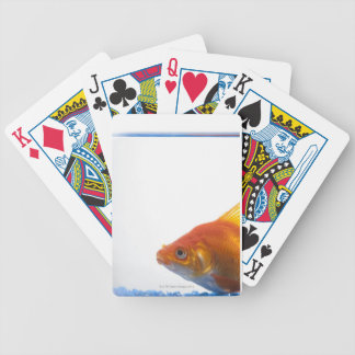 Goldfish in bowl on white background bicycle playing cards