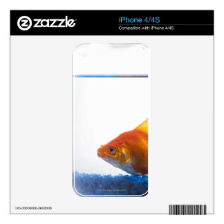 Goldfish in bowl on white background decals for the iPhone 4S