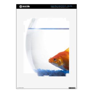 Goldfish in bowl on white background iPad 3 skin