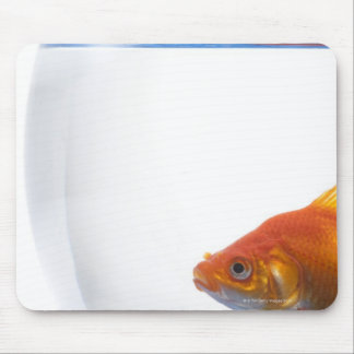 Goldfish in bowl on white background mouse pad