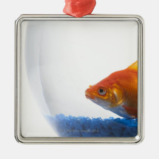 Goldfish in bowl on white background ornament
