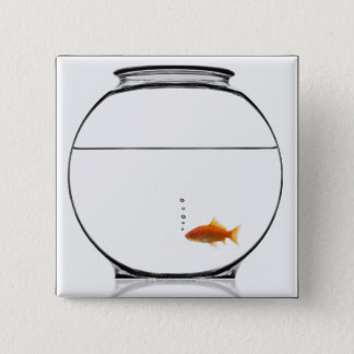 Goldfish in bowl pinback button