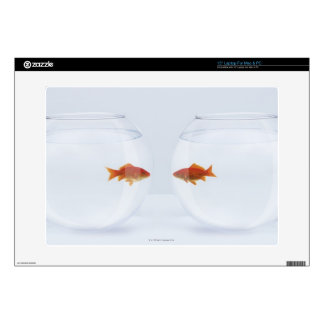 Goldfish in separate fishbowls looking face to fac skin for laptop