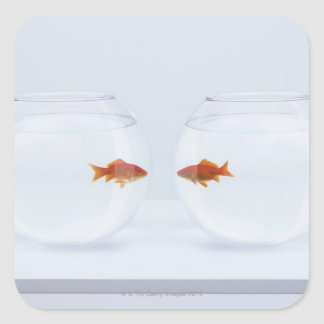 Goldfish in separate fishbowls looking face to fac square sticker