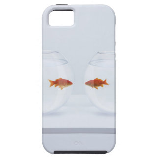 Goldfish in separate fishbowls looking face to iPhone SE/5/5s case
