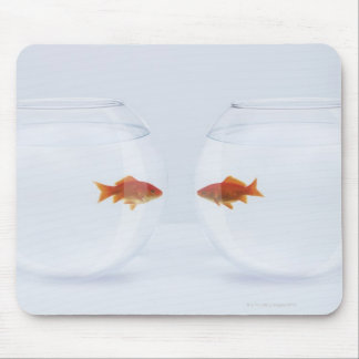 Goldfish in separate fishbowls looking face to mouse pad