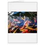 Goldfish Kona Hawaii de Koi Tarjetón