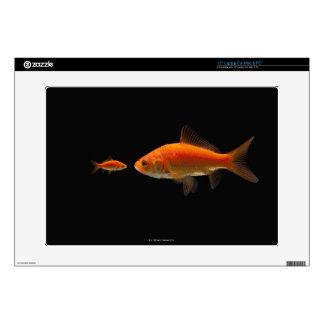 Goldfish Laptop Decals