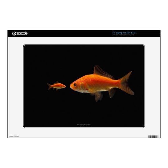 Goldfish Laptop Decals