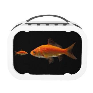 Goldfish Yubo Lunchbox