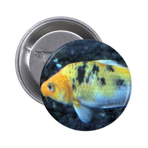 Goldfish manchado pin