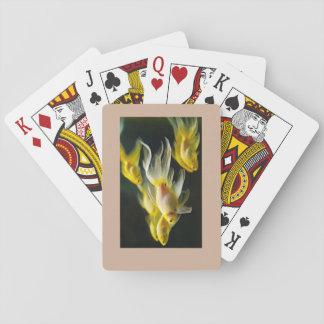 Goldfish playing cards