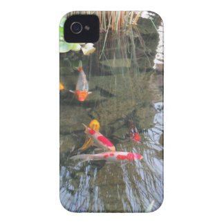Goldfish Pond iPhone 4 Case