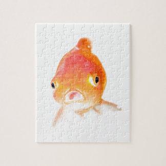 Goldfish Puzzle Con Fotos