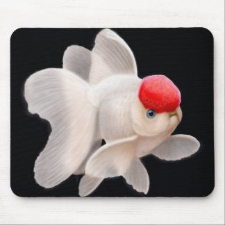 Goldfish rojo Mousepad de Oranda del casquillo Alfombrilla De Ratón