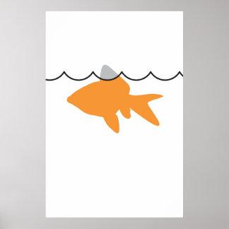 Goldfish Shark Poster Print