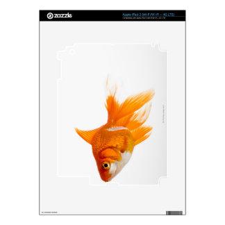 Goldfish, side view iPad 3 skin