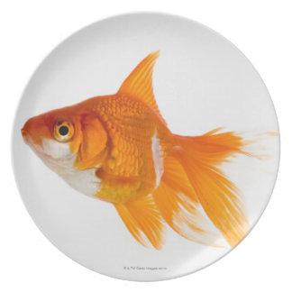 Goldfish, side view melamine plate