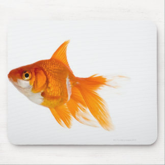 Goldfish, side view mouse pad