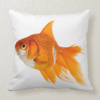 Goldfish, side view pillows