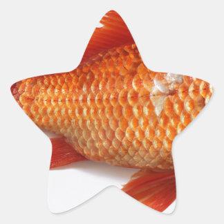 Goldfish Star Sticker