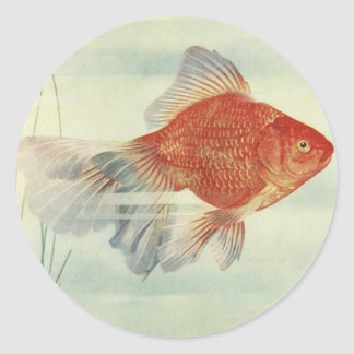 Goldfish T-Shirts, Cards & Gifts! Classic Round Sticker