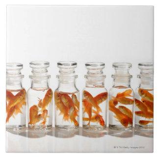 Goldfish Large Square Tile