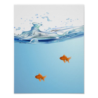 Goldfish under water aquarium posters