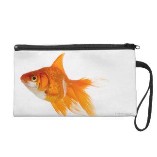 Goldfish, vista lateral
