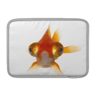Goldfish with Big eyes 2 MacBook Air Sleeve