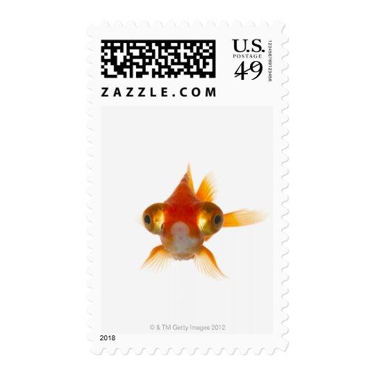 Goldfish with Big eyes 2 Postage