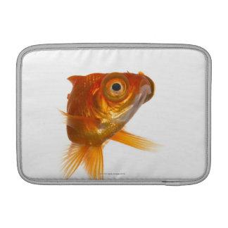 Goldfish with Big eyes 3 MacBook Sleeves