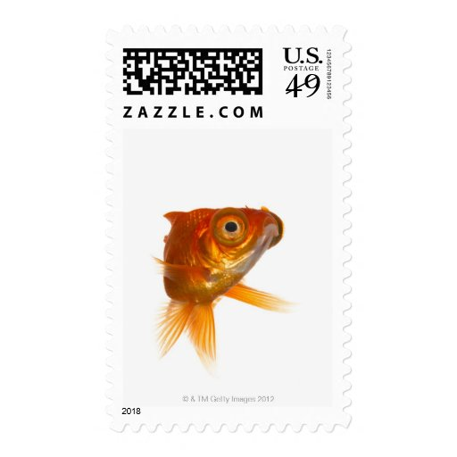 Goldfish with Big eyes 3 Postage Stamps