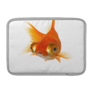 Goldfish with Big eyes MacBook Air Sleeve