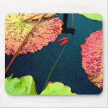 Goldfishes en waterlily la charca alfombrilla de ratón