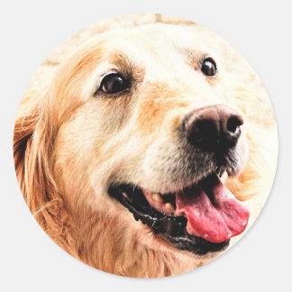 Goldie Classic Round Sticker