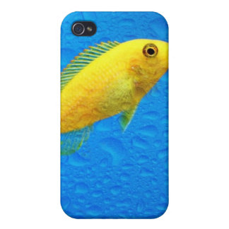 Goldie iPhone 4/4S Covers