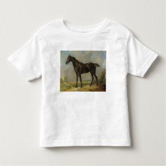 Golding Constable's Black Riding-Horse, c.1805-10 Toddler T-shirt