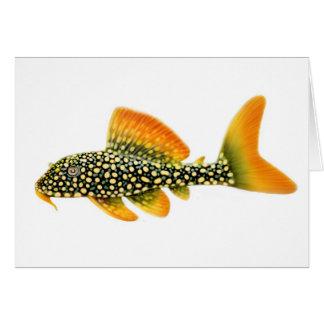 Goldy Sunshine Pleco Greeting Card