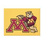 Goldy y Minnesota M